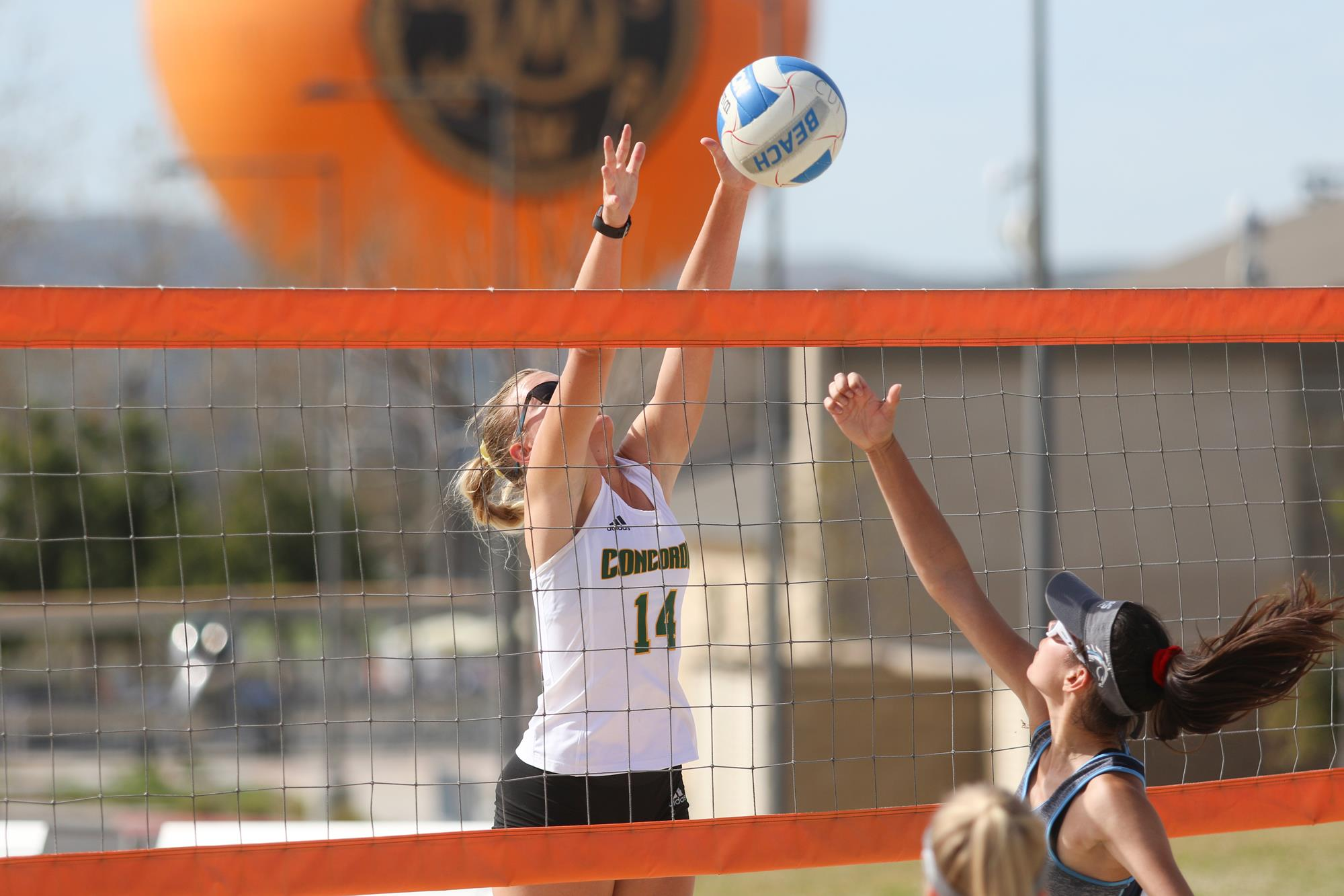 Renee Phillips S Women S Volleyball Recruiting Profile